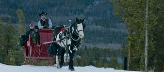 breckenridge sleigh rides two below zero breckenridge frisco co