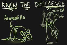 Armadillo Meme - puns armadillo funny puns pun pictures cheezburger