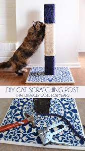 diy cat scratching post that literally lasts for years dream a