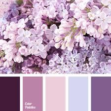 lilac color color palette 2931 color palette ideas color pallets color
