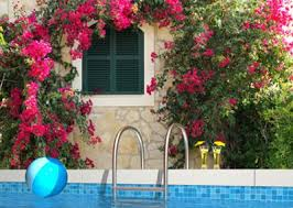 Tuscan Backyard Landscaping Ideas Tuscan Style Landscape Design Lovetoknow