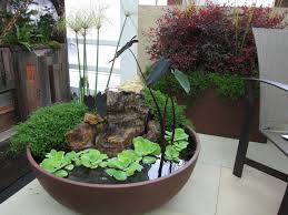 Water Ponding In Backyard Container Water Garden With Goldfish Home Outdoor Decoration