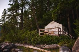 tent platform tents glamping package discover explore unwind wilderness