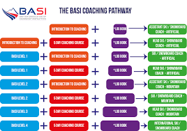 basi coaching pathway about the course
