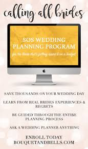 best save the dates wedding planning program 17 best ideas about budget wedding