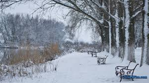 36 snow scene wallpaper