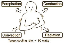 conduction and convection cooling mechanisms for human body