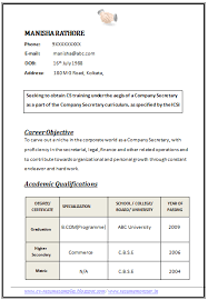 Resume Sample For Secretary by Professional Curriculum Vitae Resume Template For All Job