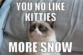 Grumpy Cat Snow Meme - grumpy cat memes quickmeme