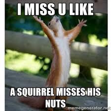 I Miss You Memes - i miss you funny pictures impremedia net