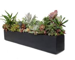 Concrete Rectangular Planter by Concrete Planter Etsy