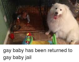 Gay Baby Meme - gay baby has been returned to gay baby jail dank meme on me me