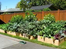 Raised Vegetable Garden Ideas Fall Decorative Vegetable Garden Ideas Fertilizing Vegetable