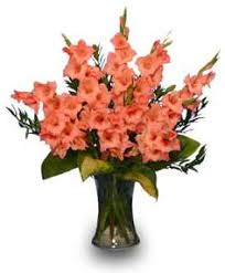 gladiolus flowers glorious gladiolus flower vase vase arrangements flower shop