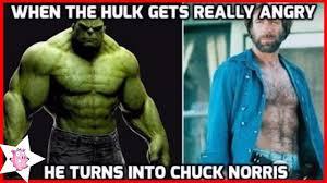 Meme Chuck Norris - 100 funniest chuck norris meme that never get old youtube