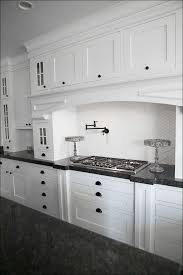 Kitchen Cabinets Door Replacement Fronts by Kitchen Custom Cabinet Doors Base Cabinets Flat Panel Cabinets
