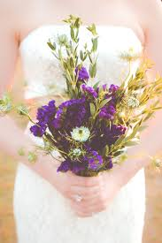 Flowers In Waco - waco photography frequently asked questions samantha kelley