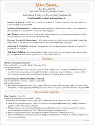 Non Profit Resume Samples Executive Resume Samples Executive Resume Writing Service