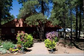 wedding venues arizona outdoor wedding venues in flagstaff arizona evgplc