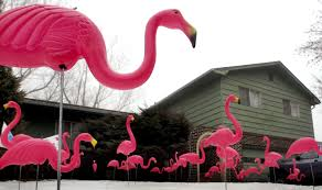 pink flamingo lawn ornament haus of kush pink