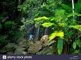 painet hk2676 rain forest puerto rico waterfall rocks stone under