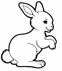 cute rabbit coloring pages free rabbit color pages print
