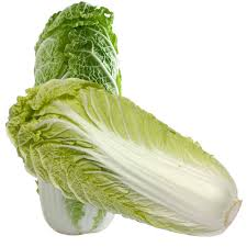 cabbage china cabbage nutrition guide and benefits veggies info