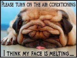 Melting Meme - please turn on the air conditioning i think my face is melting