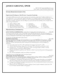 Great Executive Resume Examples 100 Good Resume Sample India Mnc Resume Format It Resume