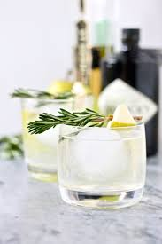 best 25 hendricks gin recipes ideas on pinterest hendrick u0027s gin