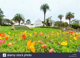 The Garden Of The Conservatory Of Flowers In San Francisco Stock