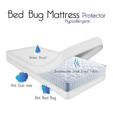 Bed Bugs In Mattress Amazon Com Remedy Bed Bug Dust Mite Cotton Mattress Protector