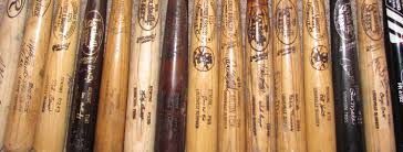 bats for sale welcome to