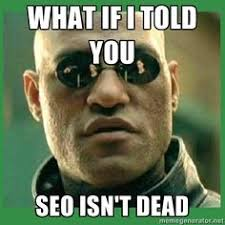 Meme Search Engine - online marketing fundamentals for driving traffic to your website