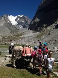 bureau des guides pralognan tours ideal for families in pralognan la vanoise