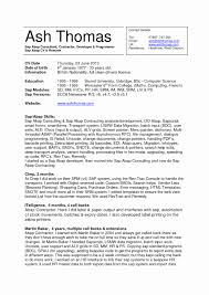 Resume Executive Summary Examples Jospar by Resume Years Of Experience Free Resume Examples By Industry Job