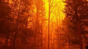 Wildfire Radio by Tennessee Ares On Standby In Wildfire Emergency Local Amateur