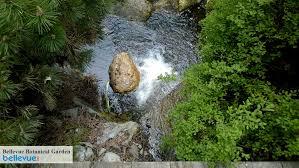 Rock Garden Bellevue Bellevue Botanical Garden Bellevue Attractions Events