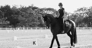 lista blanca sri ecuador fédération equestre internationale fei fei org