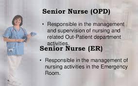 Rn Resume Objective  nursing resume template  graduate nurse