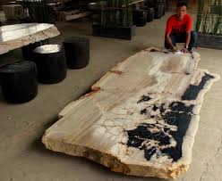 petrified wood dining table u2013 houzz petrified wood houzz and woods