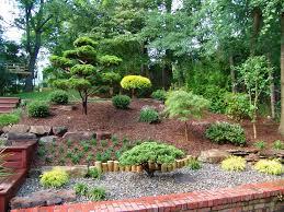 low maintenance landscaping ideas landscape southwestern with rock