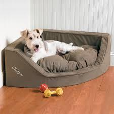 dog home decor 5 dog friendly home décor pieces