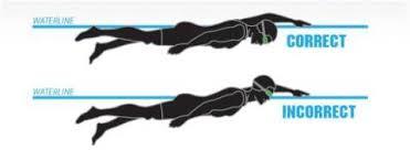 tutorial renang gaya kupu kupu teknik dasar renang gaya bebas freestyle ayo berenang