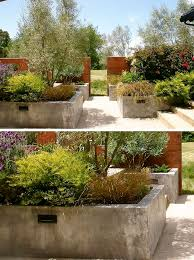 Potted Plant Ideas For Patio by Best 25 Large Concrete Planters Ideas On Pinterest Concrete