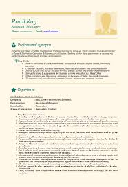 Sample Resume For Marketing Manager by Over 10000 Cv And Resume Samples With Free Download Professional