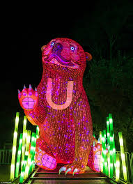Zoo Lights Boston by Vivid Sydney Preview Night At Taronga Zoo Daily Mail Online