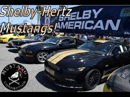 1966 hertz mustang a trio of shelby hertz mustangs 2016 2006 1966 shelby gt350