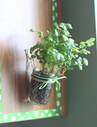 Kitchen Herb by How To Make A Hanging Kitchen Herb Garden Living A Sunshine Life