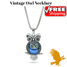 vintage owl necklace jewelry images Vintage owl necklace golden everyday png